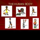 The Human Body Power Point