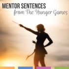 The Hunger Games Grammar Unit: Worksheets and Graphic Organizers
