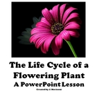 The Life Cycle of a Flowering Plant-A PowerPoint Lesson