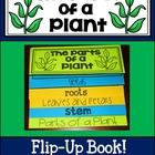 The Parts of  Plant Flip Up Book