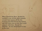 The Tale of Timothy the Turtle and Harold the Hare: A Time