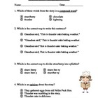 Thunder Cake Language Arts Test/Quiz ~ Houghton Mifflin® ~