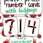 Point and Press Number Cards with Ladybugs 1-9 Extra Large Touch