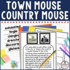 Town Mouse City Mouse Guided Reading Unit by Jan Brett