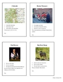 Trading Cards Templates- Microsoft Word Mail Merge Files -