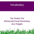 Treasures Vocabulary Power Point for The Perfect Pet