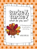 Turkey Punctuation and Coloring