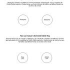 Types of Cells Double Bubble Map Worksheet