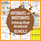 Vertebrates and Invertebrates Lessons