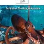 Virtual Fieldtrip - The Georgia Aquarium
