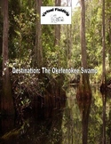 Virtual Fieldtrip - The Okefenokee Swamp