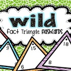 WILD Fact Triangle Flashcards {Addition & Subtraction}