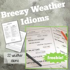 Weather Idioms FREEBIE