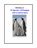 WebQuest 17 Species of Penguins and so much more....