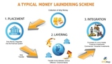 What is money laundering typologies
