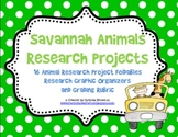 Wild about Research - African Savannah Animals