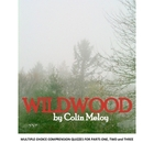 Wildwood by Colin Meloy -- Comprehension Quizzes