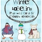 Winter Labeling Pictures and Word Cards