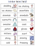 Winter Word Wall Mini Poster