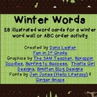 Winter Words~28 illustrated word cards