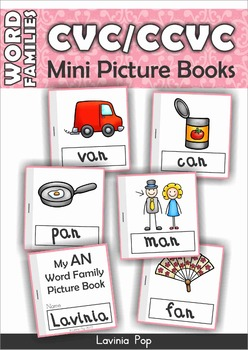 FREE Word Families - CVC & CCVC Mini Picture Books