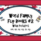 Word Family Flip Books  #2