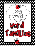Word Family Posters - Long Vowel (black and white with ladybugs