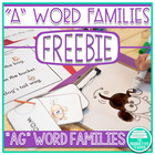 Word Family Practice -ag Words