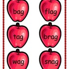 Word Family Short Vowel Sort with Answer Sheet - 6 Sets of