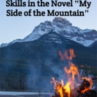"Word Searches (2) for ""My Side of the Mountain"""