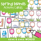 Write And Wipe Cards - Spring Blends - ccvc and cvcc
