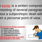 Write an Essay Lesson 2