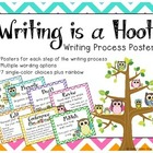 Writing Process Posters - Chevron Owls