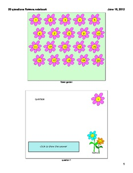 twenty questions template- flowers