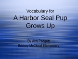 2nd Grade Treasures Vocab Powerpoint for A Harbor Seal Pup