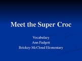 2nd Grade Treasures Vocabulary Powerpoint for Meet the Super Croc