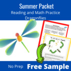 3rd-5th Grade Summer Review: Dragonfly Freebie