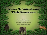 3rd Grade Science: Animals and Their Structures