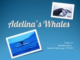 4th Grade Reading Street:  Adelina's Whales