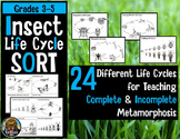 5th Grade Insect Life Cycles: Complete, Incomplete Metamor