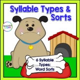 6 Syllable Types Word Sort