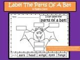 A+ Bats:  Label The Parts Of A Bat