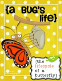A Bug's Life (Butterfly) Science for Kindergarten and First Grade