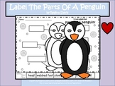 A+ Penguin: Label The Parts Of The Penguin