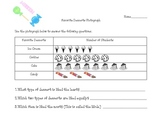 A Pictograph worksheet about desserts