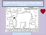 A+ Polar Bear: Label The Polar Bear