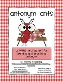ANTonym Ants Activities