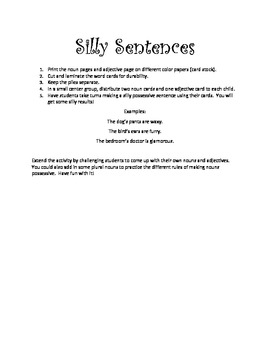 Adjective, Noun, and Possessive Silly Sentences