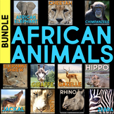 African Animals: Informational Article, QR Code Research P