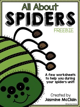 All About Spiders Worksheets